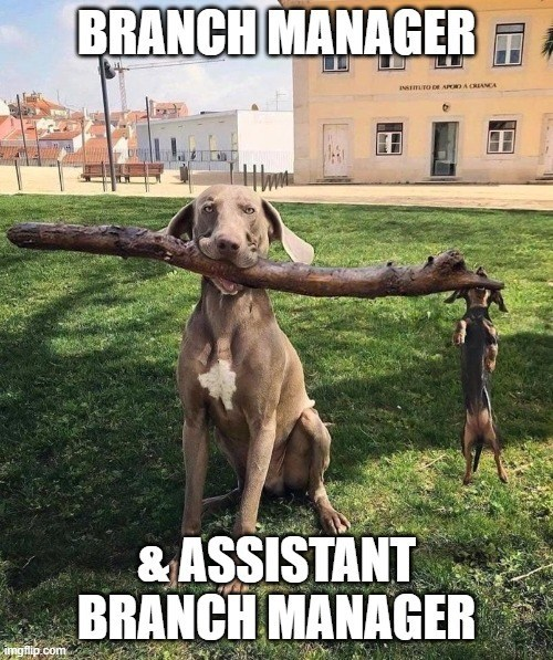 dog-branch-mgr.jpg
