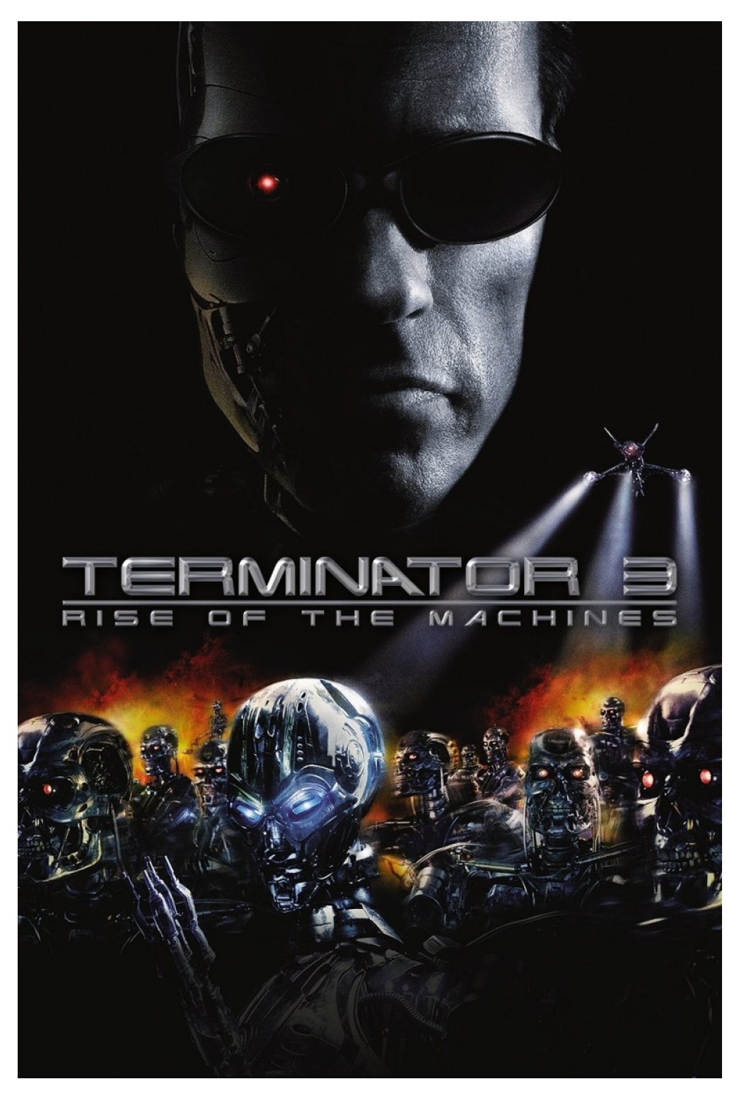 poster-terminator-3-rise-of-the-machines-schwarzenegger.