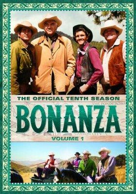 Bonanza_S10a.jpg