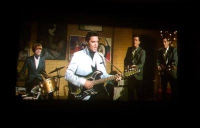 Elvis Spinout (2).jpg
