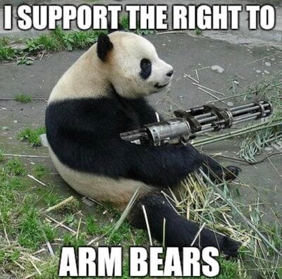 the right to arm bears.jpg