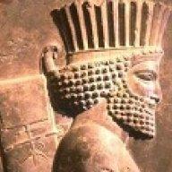 Persianimmortal