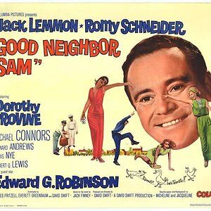 1964-Good Neighbor Sam-poster.jpg