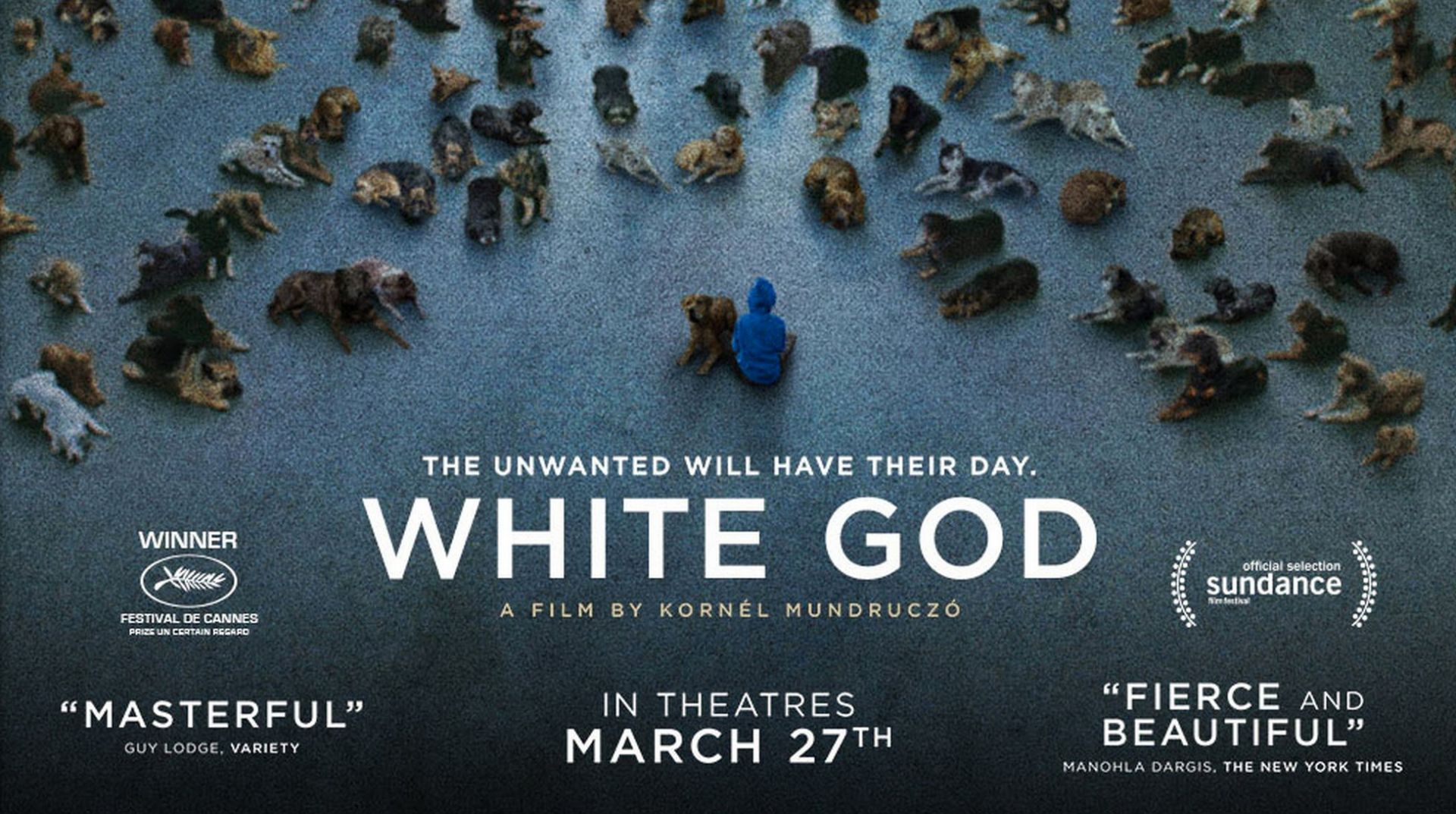 2014 White God movie poster | Home Theater Forum