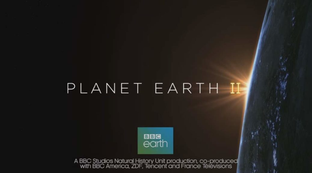 Watch Planet Earth Season 1 Episode 1: From Pole to