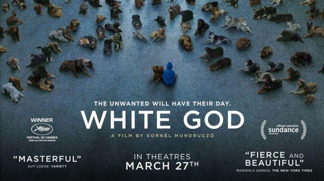 Amazoncom: closer to god movie