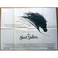 1979 black stallion poster