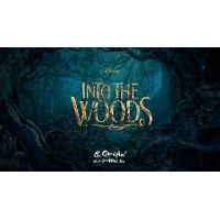 2014 Into The Woods poster