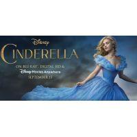 2015 Cinderella Banner