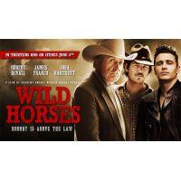 2015 Wild Horses quad