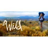2014 wild movie poster
