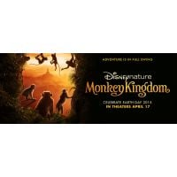 2015 monkey kingdom poster
