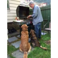BBQ Ike And Kelly 5 2015