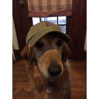 Ike In Cap #2 7 2015