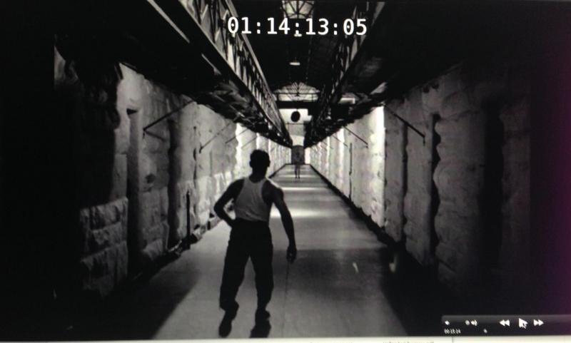 cell-1.jpg