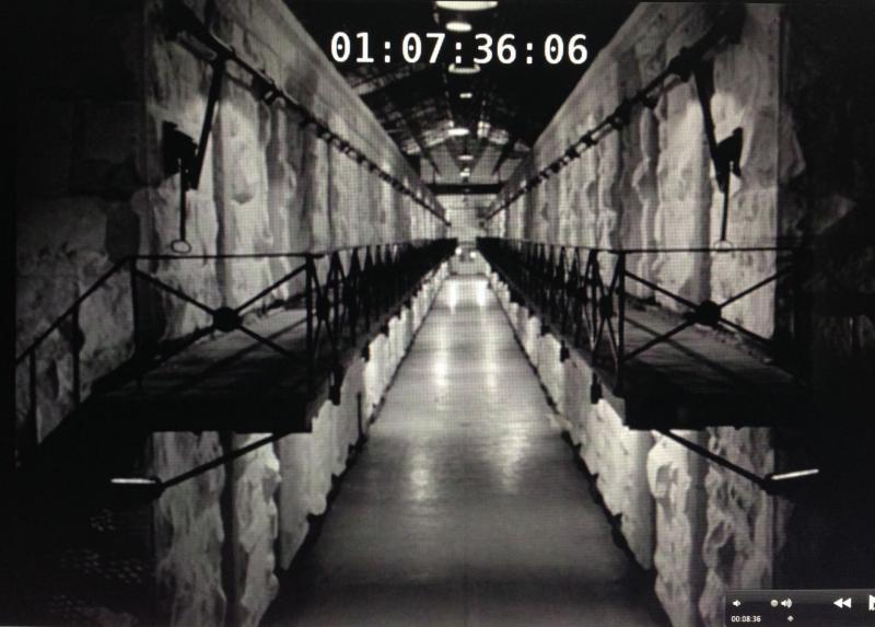 cell-2.jpg