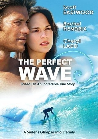 perfect wave dvd cover email.jpg