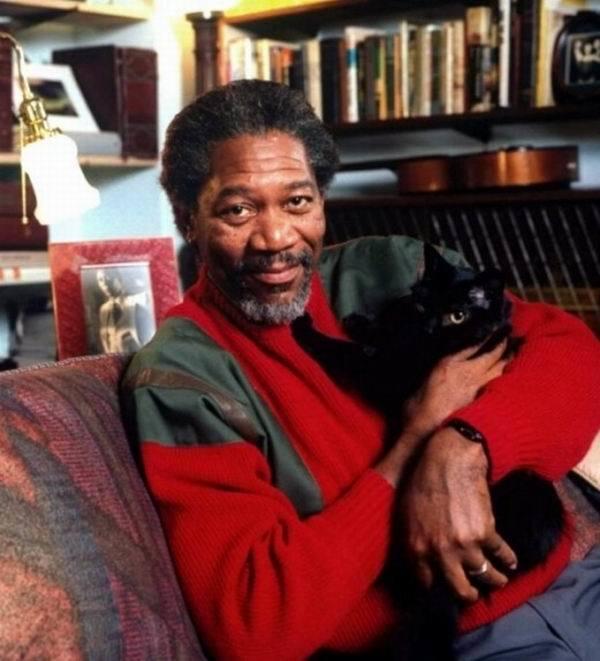 freeman and cat.jpg