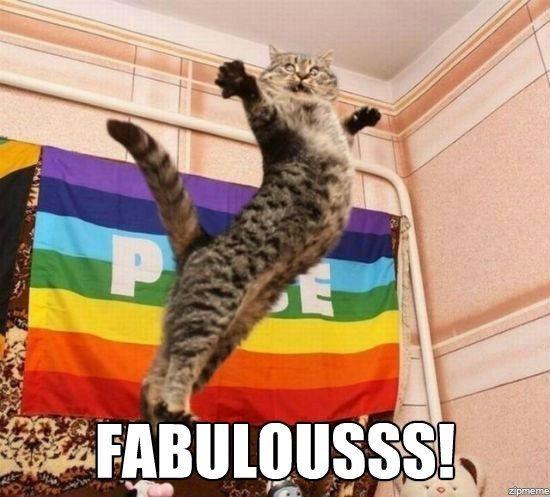 fabulous-cat-meme.jpg