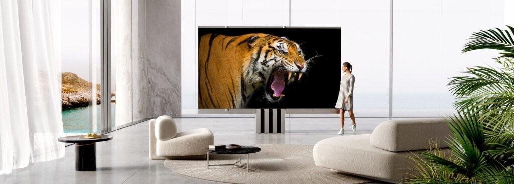 CSEEDM1_Tiger2-1024x368.jpg